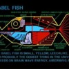 your_babelfish