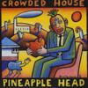 The Pineapple Head